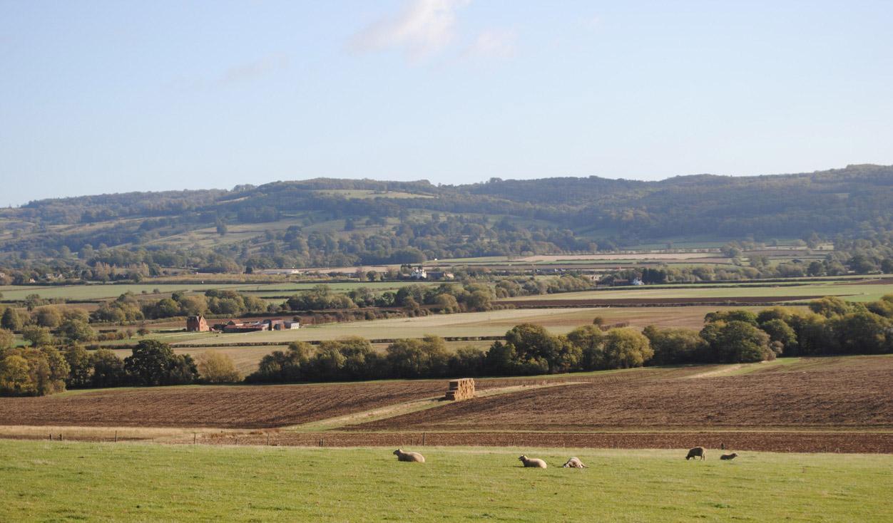 View towards the Cotswold escarpment