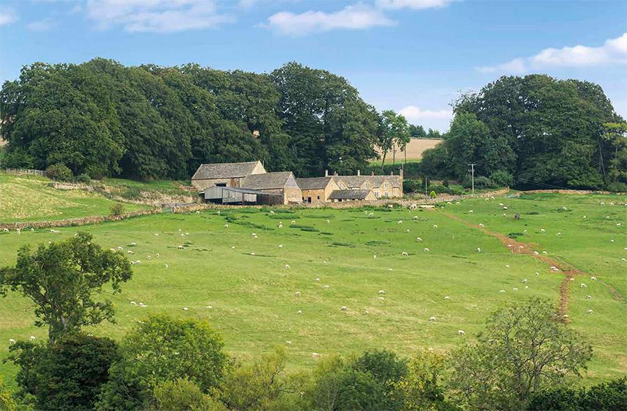 Park's Farm